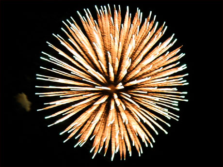 [Fireworks: Pic0011]